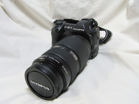 RIMG0028.JPG